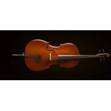 CELLO 4/4 SCALE +KILIF+YAY, KARARTILMIŞ AKÇAAĞAÇ BU
